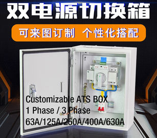 China Compact Single Phase Automatic Transfer Switch ATS Box Waterproof Wall - Mount 2 Pole 63A  400V factory